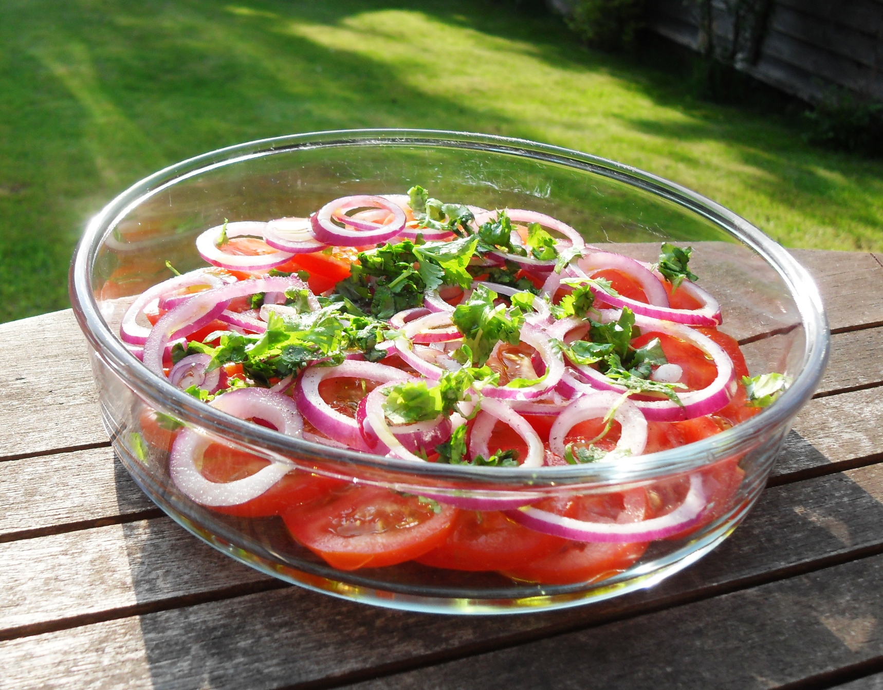 Tomato & Red Onion Salad with Coriander
