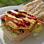 Flavours of Brazil Turkey Burgers
