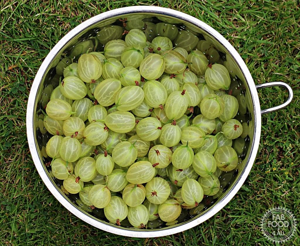 Gooseberry & Apple Jam - Fab Food 4 All
