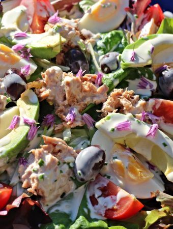 Quick Nicoise Style Salad - on a plate in the sunshine.Fab Food 4 All
