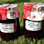 Blackberry and Raspberry Jam - Fab Food 4 All