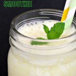 Pineapple & Coconut Smoothie in glass mug with sprig of mint & 2 straws.