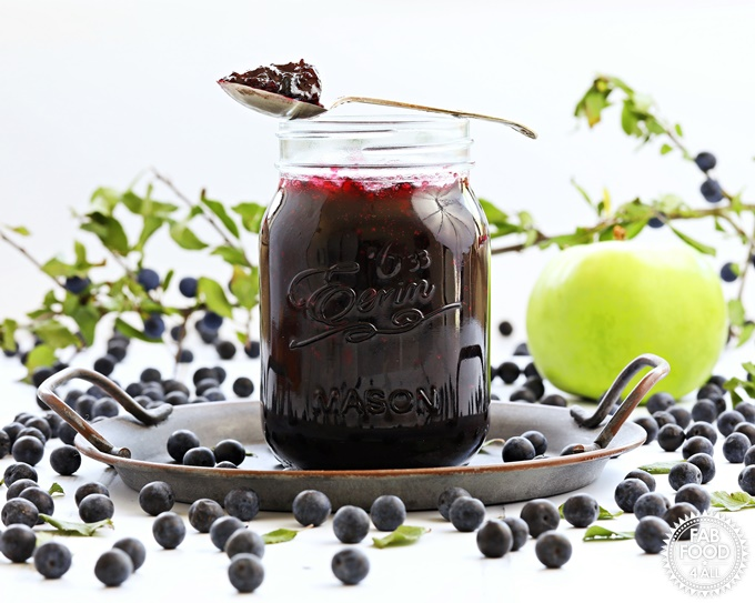 Sloe & Apple Jam in a jar on plate with spoonful of jam resting on jar..