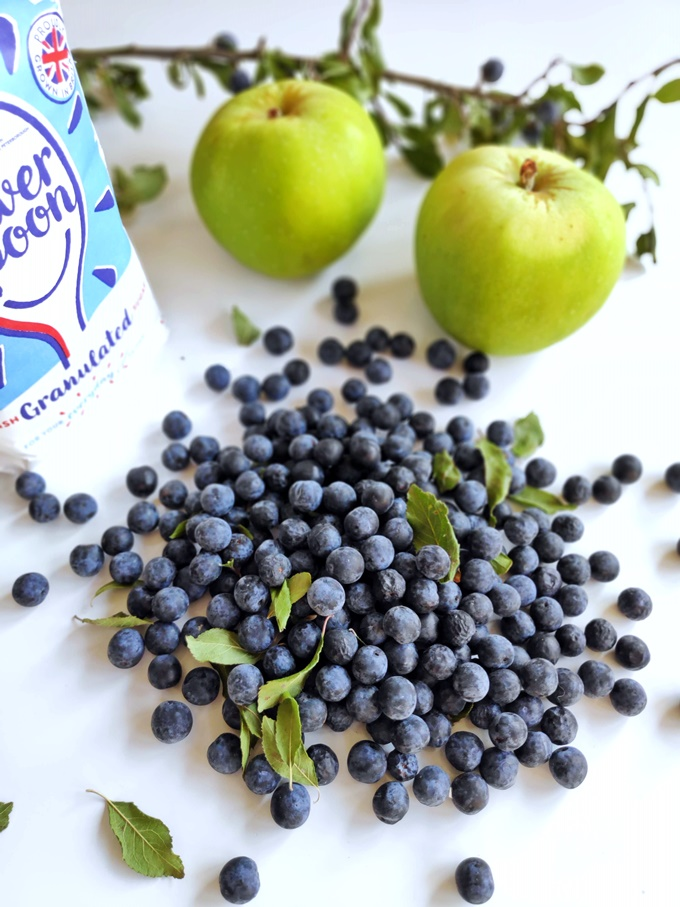 Sloes, Bramley apples and a bag of granulated sugar.
