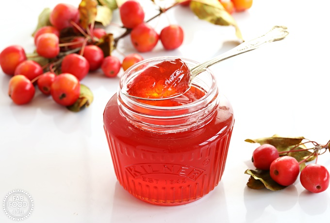 Open jar of Crab Apple Jelly with teaspoonful resting on top with crab apple branch in background.