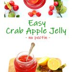 Easy Crab Apple Jelly Pinterest image.