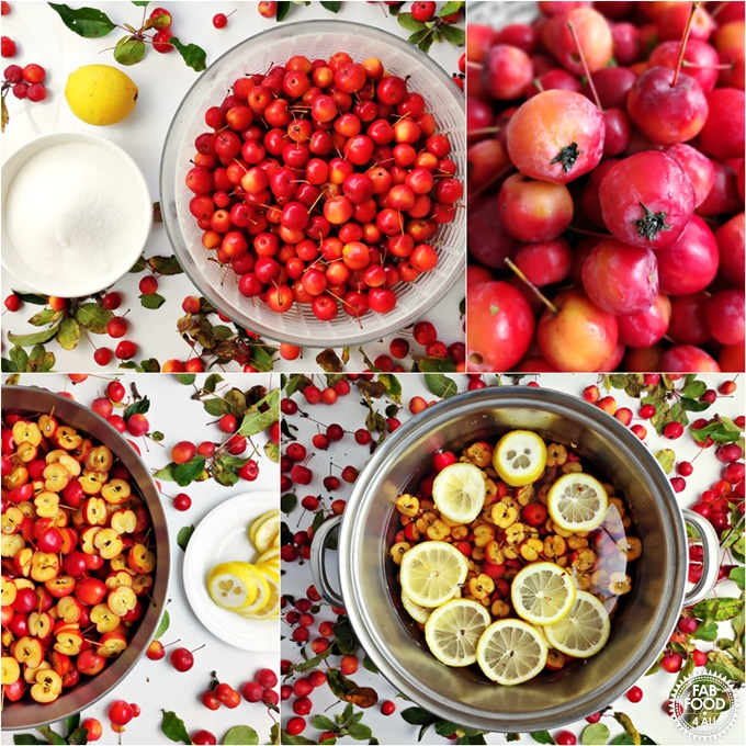 Crab Apple Jelly recipe steps 1 - 4